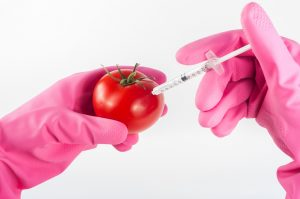 In Conversation with Dr. Ify Aniebo: The GMO issue (Part 1)